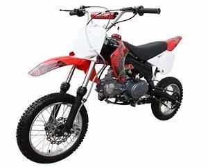 Coolster 125cc Dirt Bike Engine Diagram : ssr sr125 125cc pit bike dirt bike ~ A.2002-acura-tl-radio.info Haus und Dekorationen