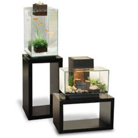 Fluval Edge 2 Large Tall Black Aquarium 46l Amazing Amazon