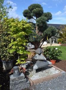 Haufler baumschule gartengestaltung aus rodgau for Garten planen mit bonsai acer