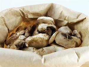 How to Store Fresh Mushrooms