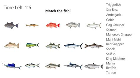 types  fishes names list  fish names
