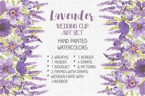 Watercolor clip art bundle: Lavender ~ Illustrations ...