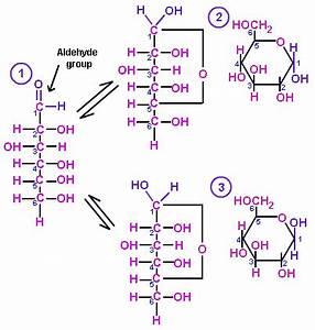 Alpha L Glucopyranose Alpha l | Volvoab