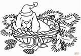 Coloring Buffalo Water Printable Canes Stocking Teddy Bear Candy Gcssi Anima sketch template