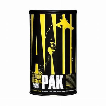 Animal Pak Universal Nutrition Multivitaminico Packs Inicio
