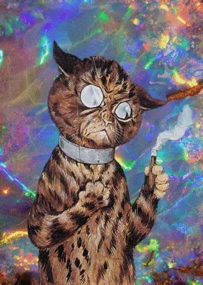 Kot Lord Psychodeliczny Oraz Smutny Cat Trippy