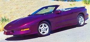 Dark Metallic Purple Car Paint images