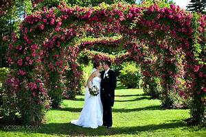 park of roses wedding photos best flowers and rose 2018 With wedding photography on a budget ct