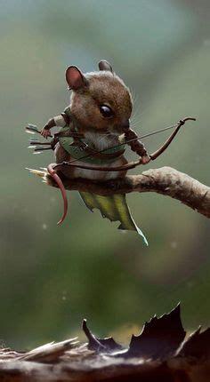 die  besten bilder von maeuschen tiere niedlich und