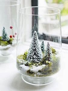 Best 25 Bottle brush trees ideas on Pinterest