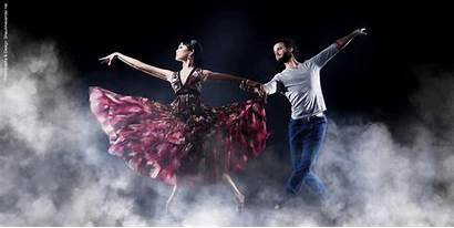 Dance Dancers Professional Studios Action Shaun Alexander