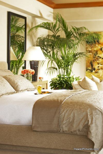 26913 lovely hawaiian themed bedding tropical bedroom simple mostly neutrals since you were