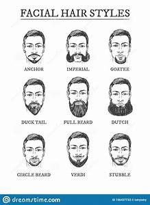 Facial Hair Styles Barber Guide Set Stock Vector