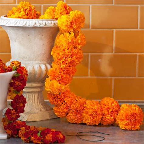 marigold garland midwest living