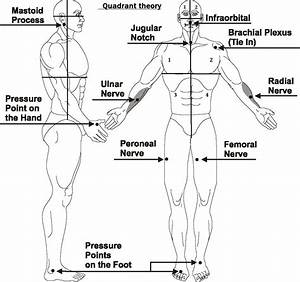 Pressure Points For Combat  Tenketsu Jutsu