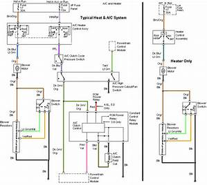 2013 Sportster Wiring Diagram Free Picture Schematic Talus Taylor 41443 Enotecaombrerosse It
