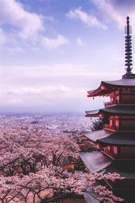 kyoto japan sheer randomness kyoto