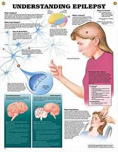 103 best Medical images on Pinterest | Mental health ...