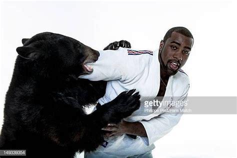Dwayne johnson ретвитнул(а) chris jericho. teddy riner wrestling bear - Google Search | Bear, Teddy ...