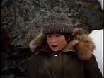 The Courage of Kavik The Wolfdog 1980 Full Movie Family ...