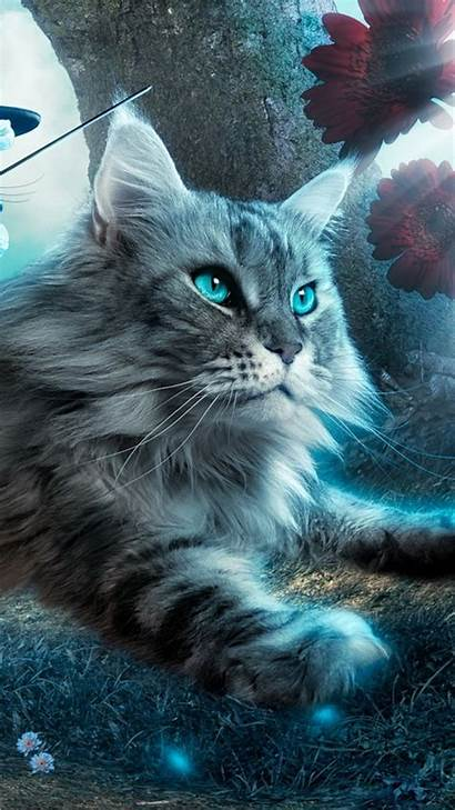 Cat Galaxy Fantasy Flying Toy Background Wallpapers