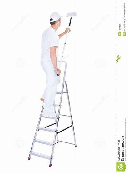 Ladder Painter Roller Paint Mature Background Male