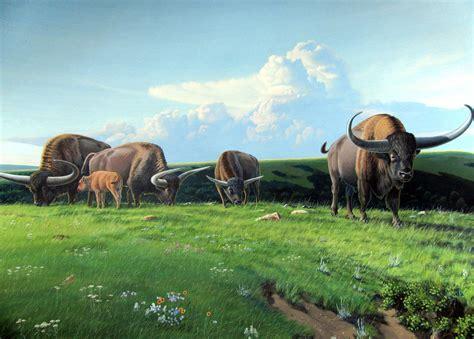 prehistoric megafauna bison north extinct american animals fauna latifrons creatures wildlife species mega dinosaur cartoon giant fiction science ancient fossils