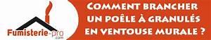 Poele Granule Ventouse : comment brancher un po le granul s en ventouse murale ~ Premium-room.com Idées de Décoration