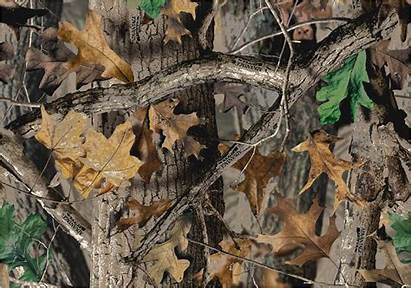 Realtree Camouflage Leaves Timber Area