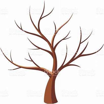 Tree Outline Leafless Bare Branch Clipart Dead