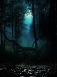 dark forest on Tumblr