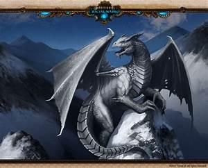 White Dragon 1 Hd Wallpaper - Hivewallpaper.com