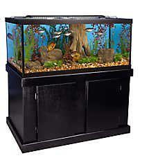 marineland 174 75 gallon aquarium majesty ensemble fish