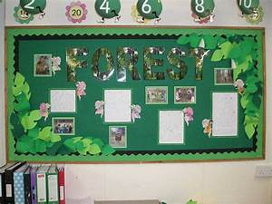 Geography  Forest  Trees  Leaves  Wood  Display  Classroom Display