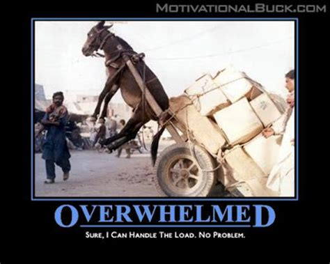 Overwhelmed Memes - funny quotes about feeling overwhelmed quotesgram