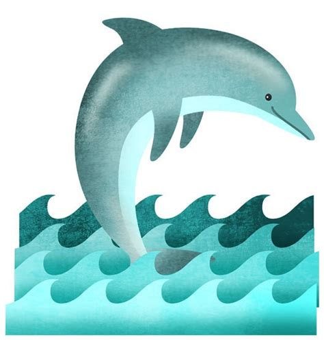 spinner dolphin cliparts   clip art