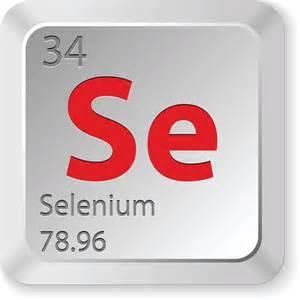 Study Links Low Selenium Diet with Thyroid Disease Selenium