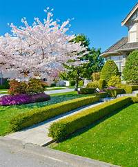 front yard trees 101 Front Yard Garden Ideas (Awesome PHOTOS) - Home ...