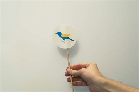 spinning thaumatrope   stick thaumatrope birds