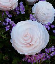 Peonies Flowers Decoration
