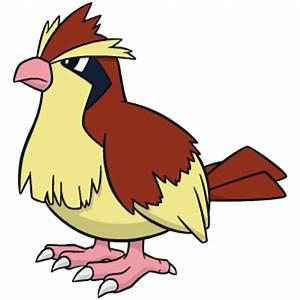 Pokemon Berechnen : review spiel pok mon platin edition editionen spiele siedlerverein ~ Themetempest.com Abrechnung