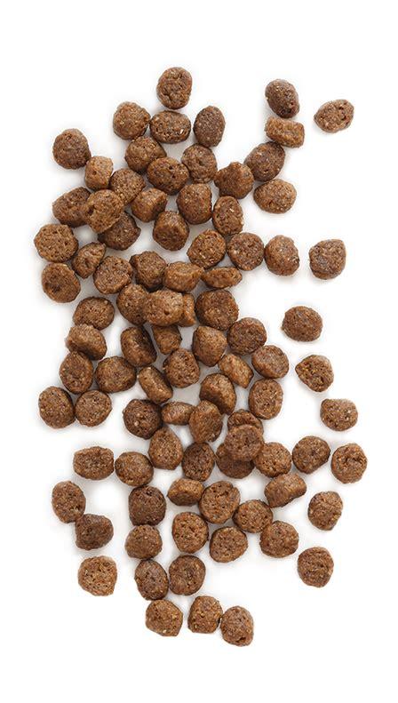 puppy vantage grain  holistic dog food formulas