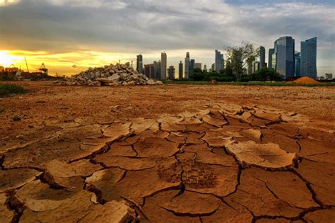 climate change apocalypse trump global warming earth apocalyptic donald half game 2100