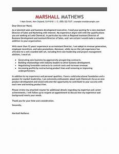 Leading professional assistant director cover letter for Director of marketing cover letter