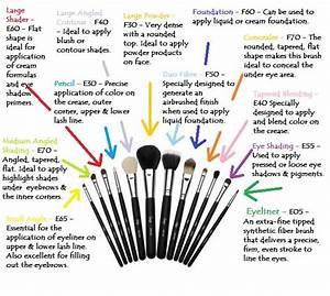Horse Brushes Diagram