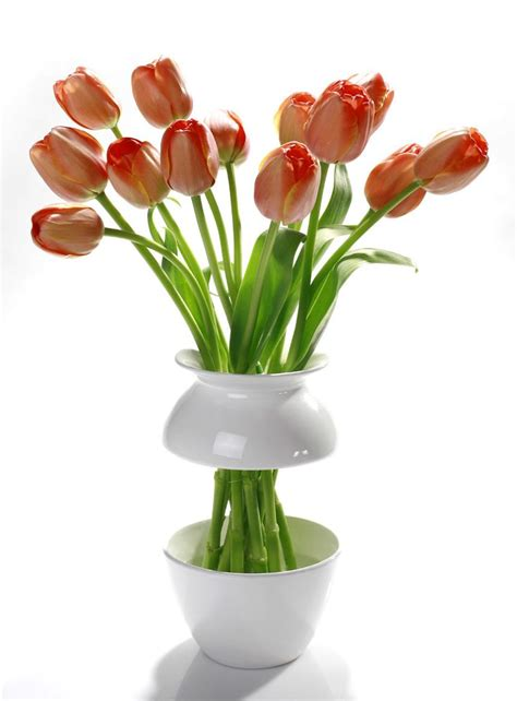 Cool Flower Vases by Vases And Creative Vase Designs Part 2