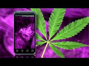 Purple Kush Marijuana app for Android - YouTube  Purple