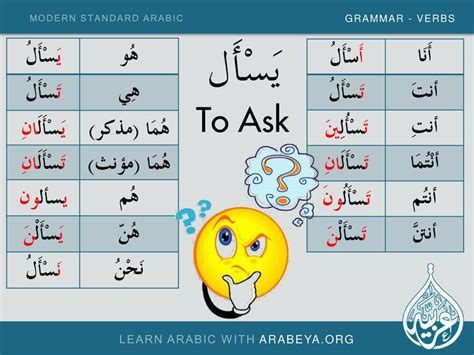 Learn New Modern Standard Arabic Verbs With