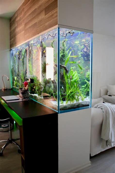 amazing ideas  interior aquariums page