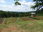 Visiting Thomas Jefferson's Monticello - Our Haunted Travels